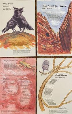 DS50 Broadside Suite: Desert Cabal: A New Season in the Wilderness; Garlic & Jackrabbits; Desert Solitaire 50; Edward Abbey's Gone