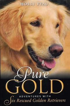 Presenting Holli Pfau, Author of Pure Gold: Adventures with Six Rescued Golden Retrievers