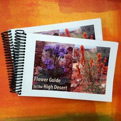 FLOWER GUIDE TO THE HIGH DESERT